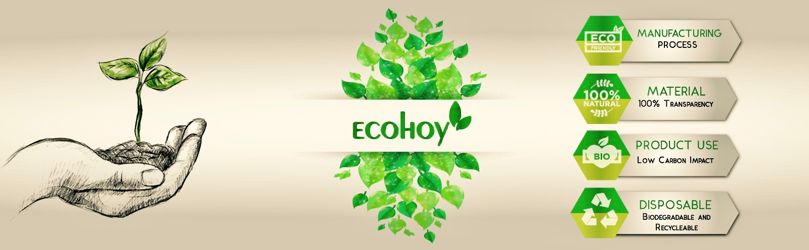 Eco-friendly and Sustainable Products at Ecohoy
