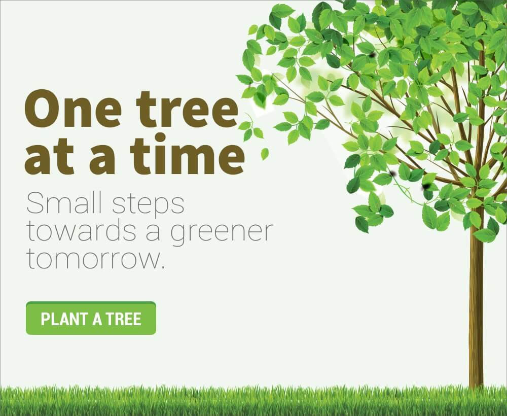 plant-a-free-from-home
